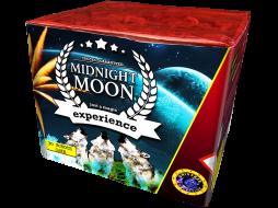 3876 Universe Midnight Moon